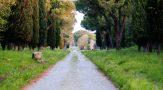 Appia Antica, approvato il Piano di assetto per la salvaguardia